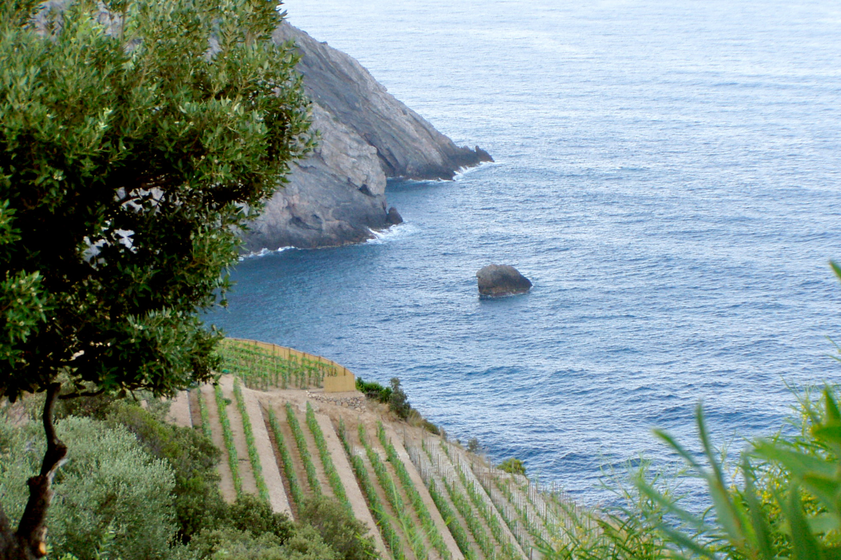 Sea At Capo D'Uomo